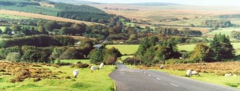 Dartmoor(3)0001